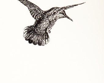 Hummingbird Notepad (Blank Book)