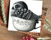 Tea Cozy Boobook Owl - ECO Limited Edition Fine Art Print