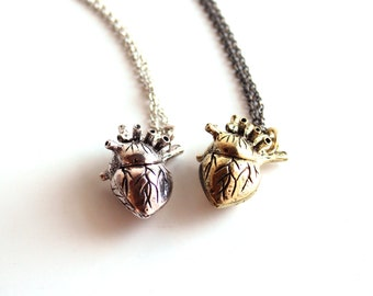anatomical heart necklace . anatomically correct heart jewelry . human heart necklace . choose silver or gold