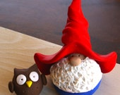 Mr. Pick-a-Gnome and His Pet Owl