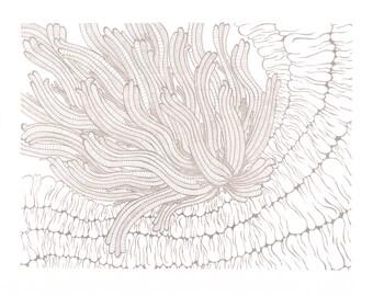 Silver Anemone Screen Print 8x10