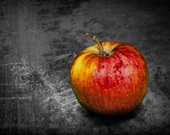Red Gala Apple against a Gray Textured Background No.0124 A Fine Art Fruit Nature Still Life Photograph