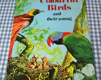 colourful birds and their young, vintage 1967 children's book