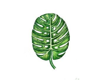 Original watercolor painting Tropical Monstera leaf Retro modern Botanical art