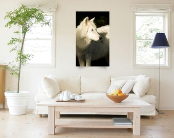 Wolf Wall Art - Wildlife Photography - Wild Animal Home Decor - Arctic Wolf - Color Fine Art Photography