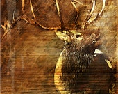 Private listing for debbie lynch - Rustic Elk Painting