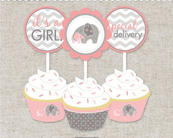 Instant Cupcake Decorations - Printable PDF Files you can instantly download, print, cut, decorate and party