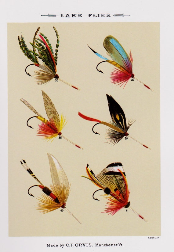 Fishing decor fly fishing print lake flies print fishing lure for Fly fishing decor