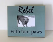 Pet picture frame for the dog and dog lover - 4 x 6, distressed picture frame.