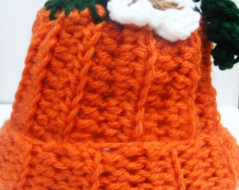 Fall, Pumpkin Baby Hat, NB through 5T for Baby and Toddlers
