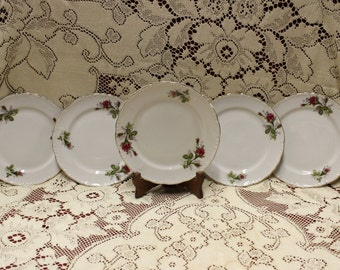 Beautiful Porcelain Set of 5 Plates
