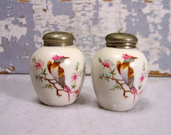 Vintage Alka Kunst Bavaria China Salt Amp Pepper Shakers