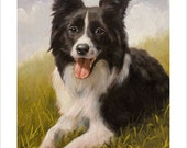 Border Collie Dog Portrait by award winning artist JOHN SILVER. Personally signed A4 or A3 size Print. BC003SP