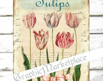 Tulips Flowers Large Image Instant Download Vintage Decoupage Shabby Chic Transfer Fabric digital collage sheet printable No. 1179