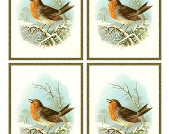 Vintage Singing ROBIN in SNOW Framed Image Sheet - Digital Instant Download - bird winter nature songbird ephemera collage supply