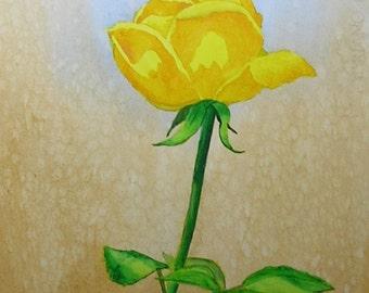 Yellow Rose................Original Watercolor Painting