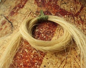 """Blonde HorseHair... Natural Horse Hair for Braiding, Weaving and Jewelry Making - 12 gram bundle 26-28"""" long - HH-BLD"""