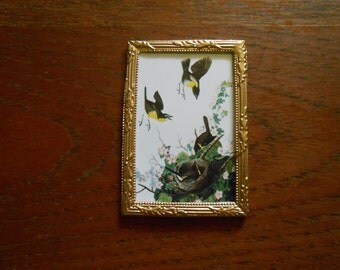 Miniature Audubon Yellow Breasted Chat print for dollhouse