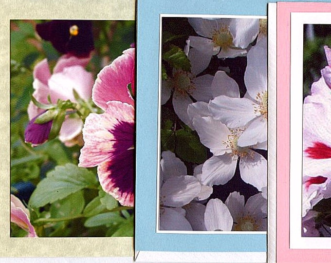 BLANK CARDS Flowers PHOTOS, 5 x 7 inch cards, 4 x 6 inch photos, nature, garden, pansy, viburnum, apple blossom, pansy geranium,Mother's Day