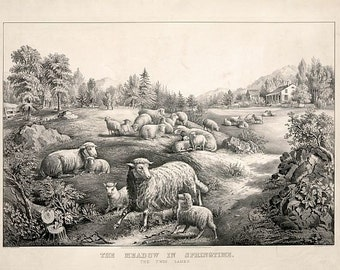 antique victorian lithograph lambs in the countryside in the spring illustration digital download