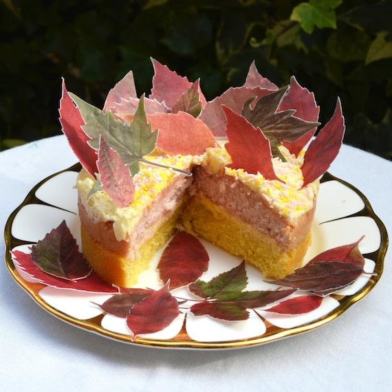 Edible Cake Images Thanksgiving : Thanksgiving Edible Cake Cupcake Fall Leaves ...