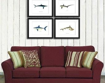 Shark Decor art print set of 4, Boy bedroom nautical Decor Shark Art print wall hanging, Ocean Nursery Decor