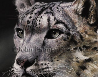 SNOW LEOPARD PAINTING, snow leopard picture, snow leopard print from my original pastel painting