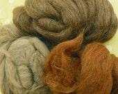 Shetland Wool Roving for Needle Felting or Spinning