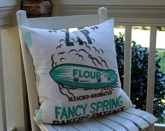 ZIP Flour Sack Pillow Cover - Turquoise and Brown - 18""
