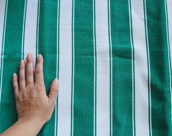 Green Striped Cotton Canvas Fabric