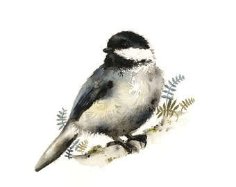 Nature Art - watercolor bird - Chickadee watercolor PRINT