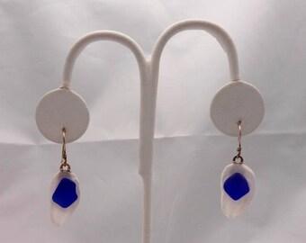 Sea Glass Earrings - Cobalt Blue Sea Glass Earrings set on Sea Shells-Gift Idea-Mother's Day Gift Idea-Mother's Day - Mother - Mom