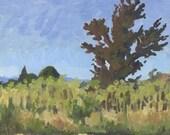 Plum Tree: Original Oil Painting Plein Air Landscape