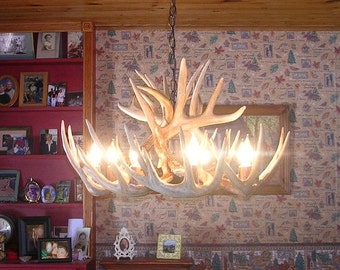 Brand New 28 inch Whitetail Deer Shed Antler Chandelier with center Down Light,
