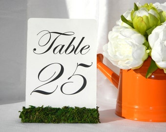 Moss Table Numbers - Rustic Chic Wedding Moss Table Number Holders (Set of 10)