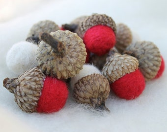 Wool Needle Felted Acorns in Red & White Home Decor Holiday Decorations