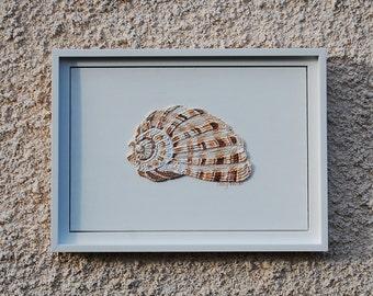 Sea Shell Painting - String Art Textured Abstract Wall Art Nautical Sea Beach Art Framed Artwork Nursery Decor