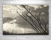 Sky Art, Arizona Landscape Photography, Cloud Art, Arizona Monsoon, Thunderstorm Art, Fine Art Photography