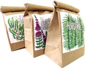 Any Wild Herb . for your apothecary / herbal cupboard