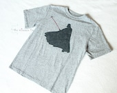 Darth Vader Birthday Shirt with Light Saber - Star Wars Theme - Custom Order - Clothes for Boys