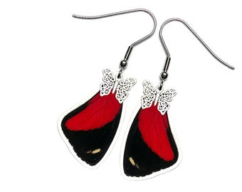 Real Butterfly Wing Earrings (Callicore Cyllene Forewing - E185)