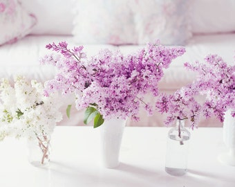Still Life Photography - Purple Spring Lilacs Photo Mothers Day Print Purple White Vintage Romantic Decor Cottage Style Home Art Still Life