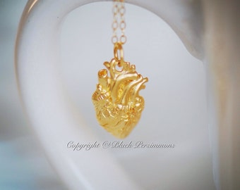 Your Heart is the Most Important Necklace No. 1 - 24K Gold Plated Sterling Silver Vermeil Anatomical Heart Charm - Free Domestic Shipping