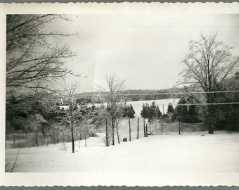 Vintage Winter Photo Freshly Fallen Snow On Trees And In Field Antique Country Photograph