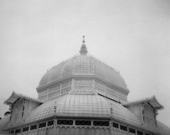 Conservatory of Flowers No. 2