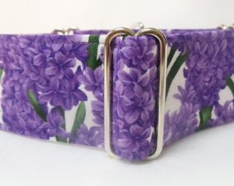 Purple Hyacinths Greyhound, Whippet, Great Dane Martingale Collar