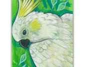 Cockatoo Parrot Original Miniature Painting on a Playing Card