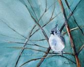 for her bird painting bird art PRINT bird art bird art print blue bird painting bluebird 11x14 mom gift bird painting titmouse cottage chic