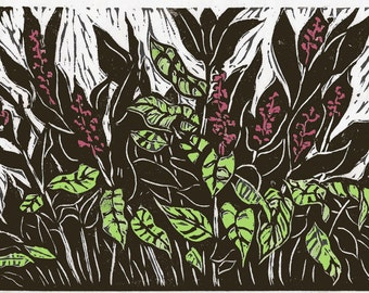 Thai Ginger, limited edition linoleum block print, printed and signed in pencil by the artist