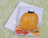 Cute Black Cat Pumpkin Halloween Card